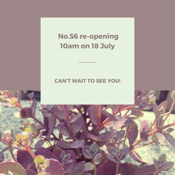 Reopening on 18 July
